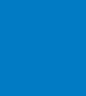 raymonts ikon